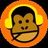 Monkey Disko